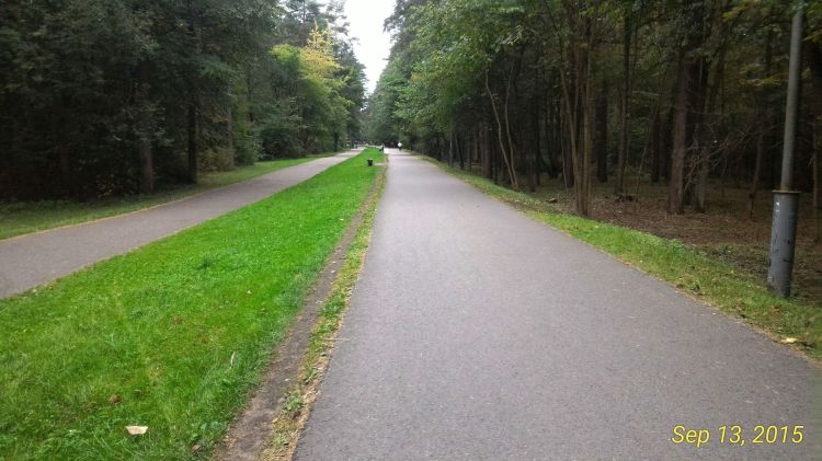 While I was running through Vingis Park - the largest park in Vilnius