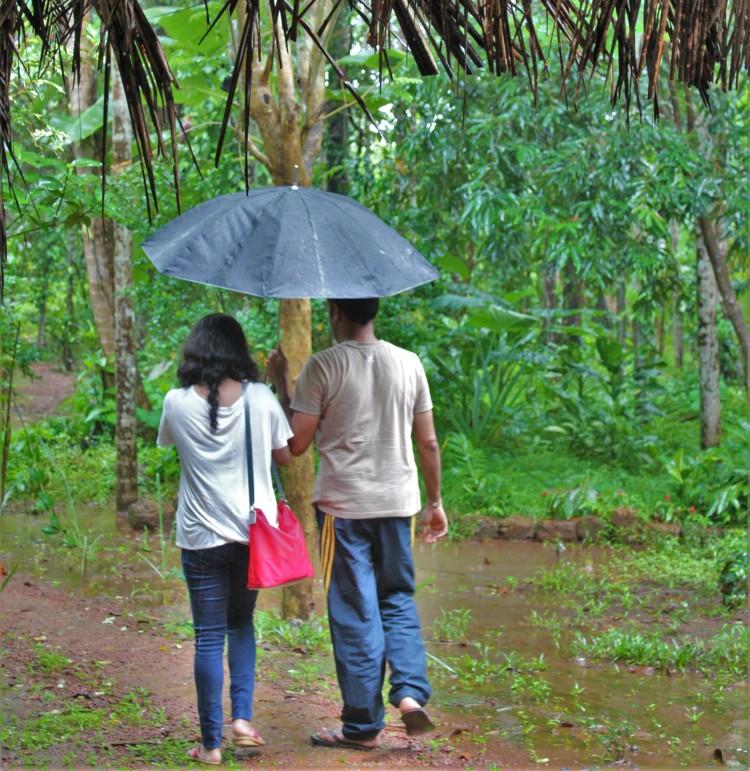 Take a romantic walk through the plantation under a cozy umbrella