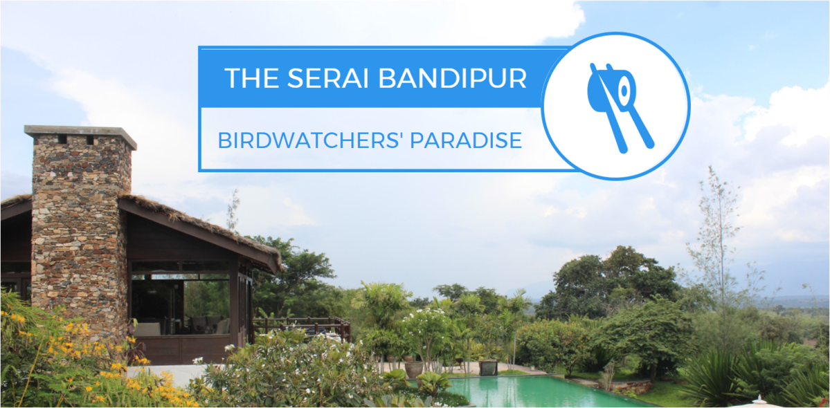 Why The Serai Bandipur Is Every Birdwatcher's Paradise